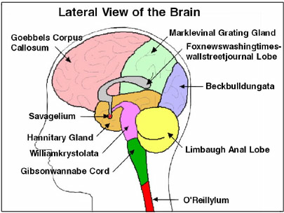 12/13/2007) Revealed: Talk Show Host Brain Disorders